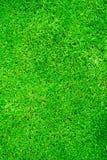 Fond d'herbe verte Photo stock