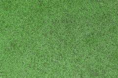 Fond d'herbe verte Photographie stock