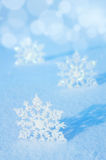 Fond d'hiver. Images libres de droits