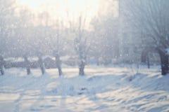 Fond d'hiver de nature de Milou photo stock