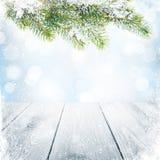 Fond d'hiver de Noël avec l'arbre de sapin de neige Photographie stock