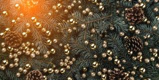 Fond d'hiver des branches de sapin Orné avec des babioles et des cônes d'or Carte de Noël Vue supérieure Félicitations de Noël image libre de droits