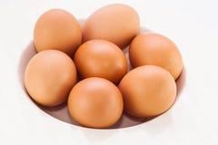 Fond d'isolat d'oeufs bruns de poulet Images stock