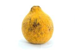 Fond d'isolement et blanc de fruit de Santol Image stock