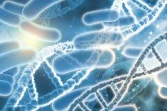 fond 3D médical avec des brins d'ADN Image stock