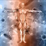 fond 3D médical avec le chiffre masculin avec les cellules de virus et l'ADN illustration libre de droits