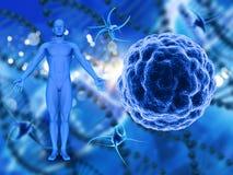 fond 3D médical avec les cellules de virus et le chiffre masculin illustration libre de droits