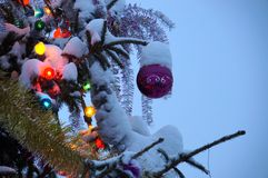 Fond d'an neuf ou de Noël Standi décoré d'arbre de Noël Photo stock