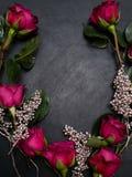 Fond d'obscurité de décor d'argent de guirlande de roses rouges Photos libres de droits