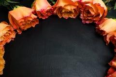 Fond d'obscurité de roses d'automne de rouge orange Photographie stock libre de droits