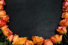 Fond d'obscurité de roses d'automne de rouge orange Images libres de droits