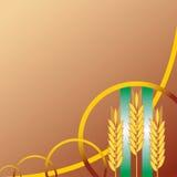 Fond d'oreilles de blé Photographie stock libre de droits
