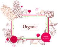 Fond d'Orgalic avec la silhouette de fruits tropicaux illustration de vecteur