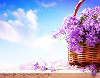 Fond d'été, fleurs d'été dans le panier Images stock