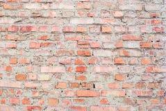 Fond d'un vieux mur de briques rouge avec une texture claire Photos stock