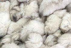 Fond d'une texture de fourrure de la fourrure-incidence chère Photographie stock