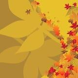 fond de 3 automnes Photos stock