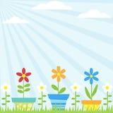 Fond de bacs de fleur Photos libres de droits