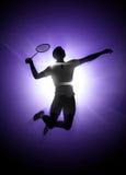 Fond de badminton Image stock