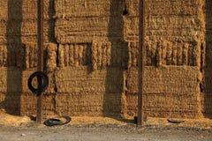 Fond de balle de foin Image stock