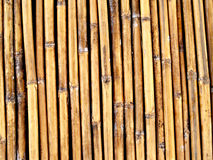 Fond de bambou image libre de droits