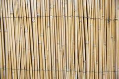 Fond de bambou photo stock