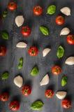 Fond de basilic d'ail de tomate Image libre de droits