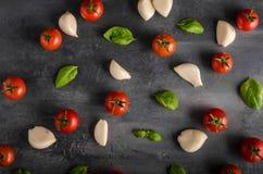 Fond de basilic d'ail de tomate Photos libres de droits
