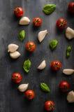 Fond de basilic d'ail de tomate Photo stock