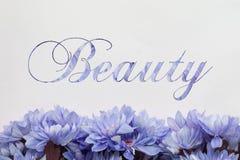 Fond de beauté avec les fleurs et le texte Images libres de droits