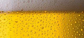 Fond de bière Images stock