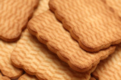 Fond de biscuits Images stock