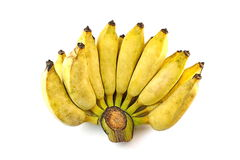 Fond de blanc d'isolat de banane de Pisang Awak photographie stock libre de droits