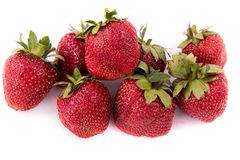 Fond de blanc de panier de fraise Photos libres de droits