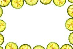 Fond de blanc de trame de parts d'oranges Image stock