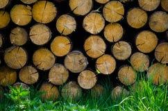 fond de bloc en bois photo stock