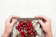 Fond de bol de cerise, fruits juteux Copiez l'espace pour le texte image libre de droits