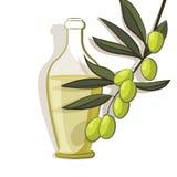Fond de branche d'olivier Photographie stock