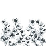 Fond de branches d'olivier noir et blanc illustration stock