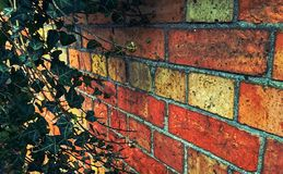 Fond de Bricked Photos libres de droits