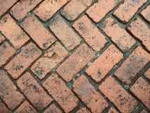 Fond de brique photo stock