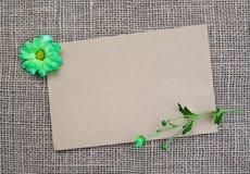 Fond de Brown avec les fleurs et l'espace de copie Photo stock