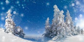Fond de célébration de vacances de Noël prêt pour des concepteurs Neige tombant au-dessus d'un beau paysage d'hiver de panorama,  image libre de droits