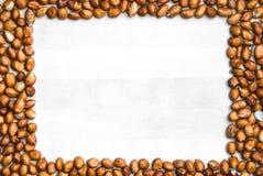 Fond de cadre d'arachide image libre de droits