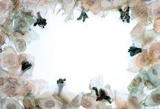 Fond de cadre de fleur et de graine Photo stock