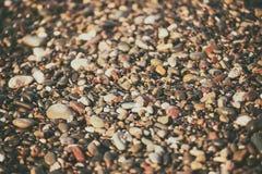 Fond de caillou de mer Photo libre de droits