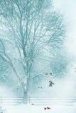 Fond de carte de Noël. Image stock
