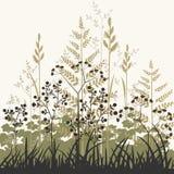 Fond de centrales et d'herbes illustration stock