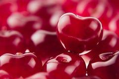 Fond de cerise avec la cerise sous la forme de coeur Cerises riches fraîches mûres Images libres de droits