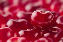 Fond de cerise avec la cerise sous la forme de coeur Cerises riches fraîches mûres Image libre de droits